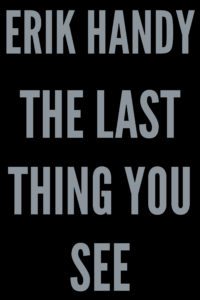 The Last Thing You See book cover